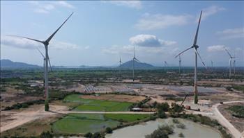 Công bố Top 10 doanh nghiệp lĩnh vực năng lượng sạch Việt Nam