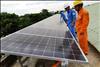 Đầu tư cho điện mặt trời sẽ không chịu thuế tiêu thụ đặc biệt