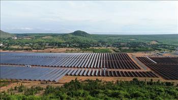 Sắp có Quyết định phê duyệt giá bán điện mặt trời nối lưới