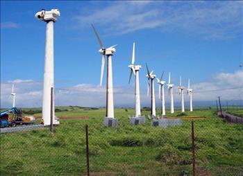 Tập đoàn năng lượng mặt trời lớn nhất thế giới muốn đầu tư tại Việt Nam