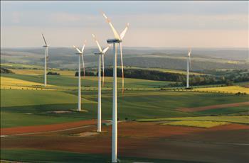 2020 là năm kỷ lục của năng lượng tái tạo