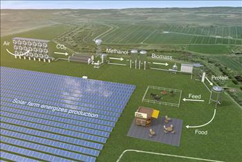 Sản xuất lương thực từ vi sinh vật sử dụng năng lượng mặt trời